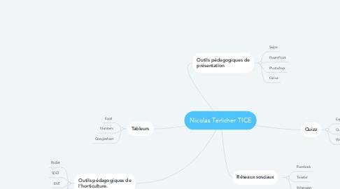 Mind Map: Nicolas Terlicher TICE