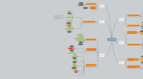 Mind Map: HC TOOLWIEL