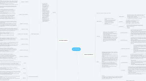Mind Map: NUTRIENTES