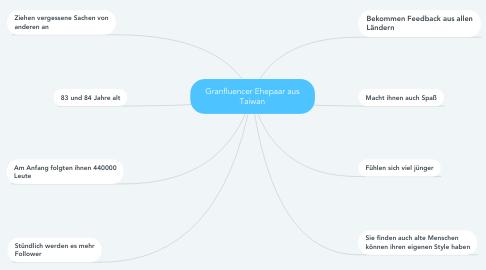 Mind Map: Granfluencer Ehepaar aus Taiwan