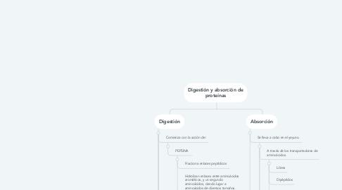 Mind Map: Digestión y absorción de proteínas