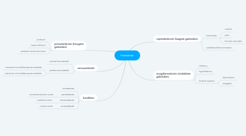 Mind Map: hersenen