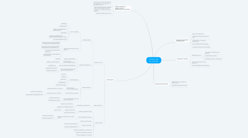 Mind Map: ESTRUCTURA DEL ESTADO