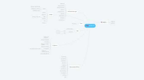Mind Map: Niere
