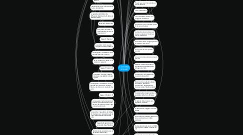 Mind Map: IL SISTEMA SOLARE