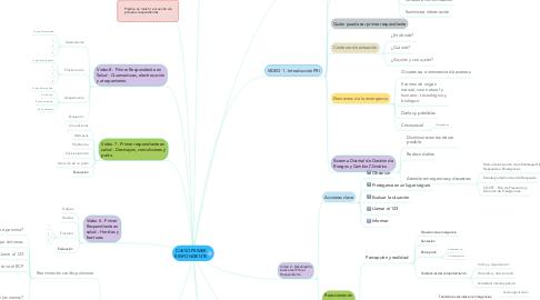Mind Map: CURSO PRIMER RESPONDIENTE
