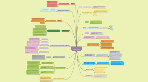 Mind Map: Ley Sarbanes-Oxley