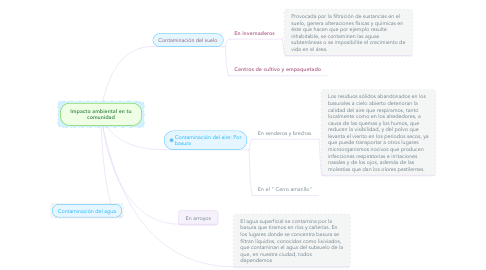 Mind Map: Impacto ambiental en tu comunidad