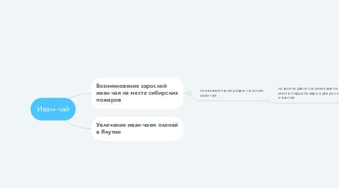 Mind Map: Иван-чай