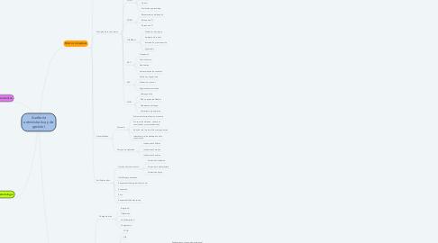 Mind Map: Auditoría administrativa y de gestión I