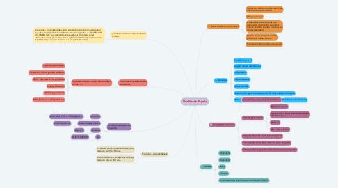 Mind Map: Visa Estudio España