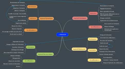 Mind Map: MANAGER