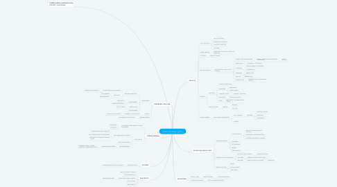 Mind Map: Historia del diseño grafico