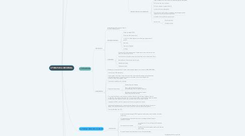 Mind Map: LITERATURA MEDIEVAL