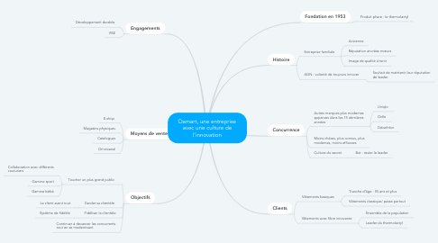 Mind Map: Damart, une entreprise avec une culture de l'innovation