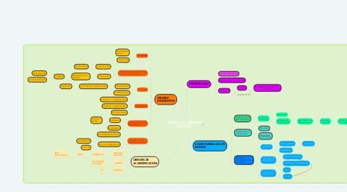 Mind Map: TEORIA DE WALTER MISCHEL