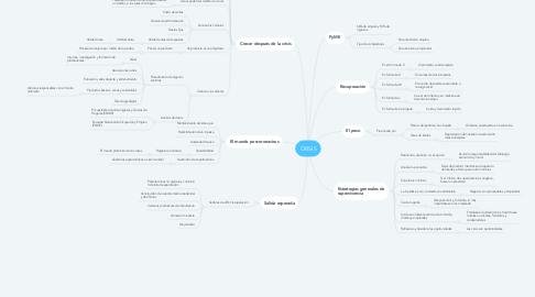 Mind Map: CRISIS