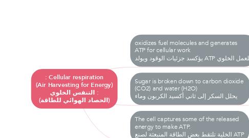 Mind Map: : Cellular respiration (Air Harvesting for Energy) التنفس الخلوي : (الحصاد الهوائي للطاقة)