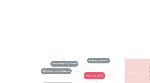 Mind Map: PROCARIOTAS