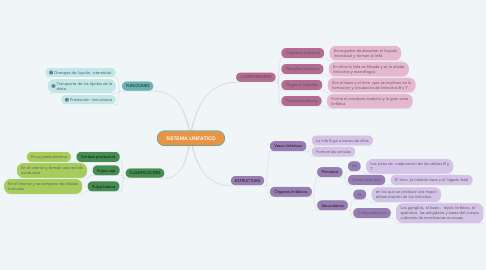 Mind Map: SISTEMA LINFATICO