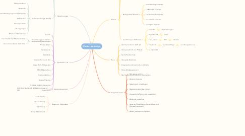 Mind Map: Wertstromdesign