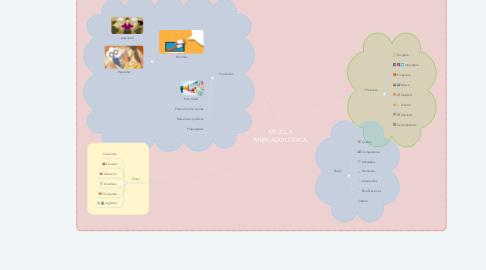 Mind Map: MEZCLA MERCADOLÓGICA
