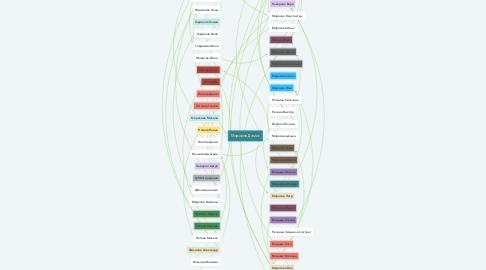Mind Map: Морозов Дамис