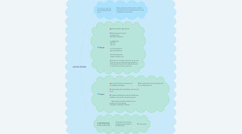 Mind Map: LLUVIA ÁCIDA