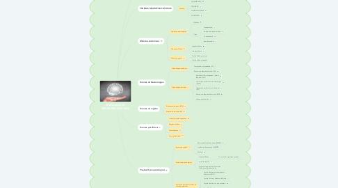 Mind Map: Trastornos del desarrollo del Sistema Nervioso