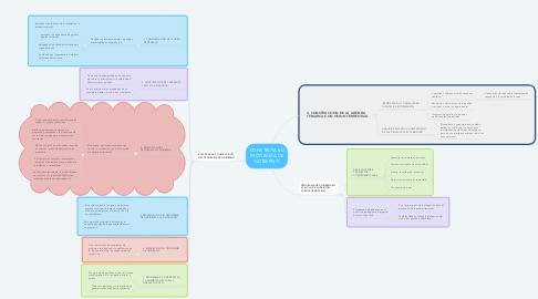 Mind Map: CONSTRUYA SU PROGRAMA DE GOBIERNO