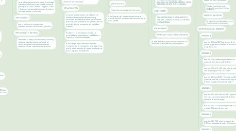 Mind Map: EMBRIOLOGIA GENERAL