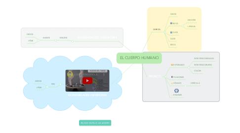 Mind Map: EL CUERPO HUMANO