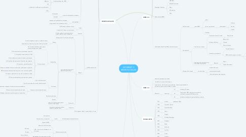 Mind Map: INTERNET Y REDES SOCIALES