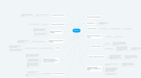 Mind Map: MARCHA