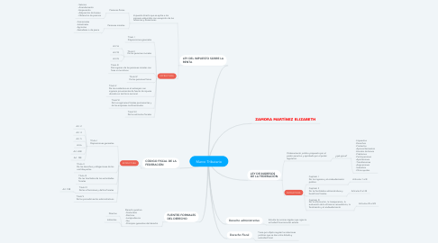 Mind Map: Marco Tributario