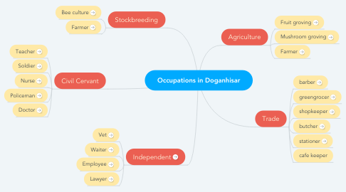 Mind Map: Occupations in Doganhisar