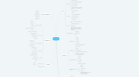 Mind Map: zefir_smm