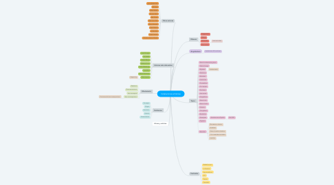 Mind Map: Instalaciones artísticas