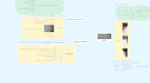 Mind Map: Kapitel 8 : Produktion
