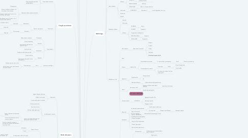 Mind Map: I FUNGHI