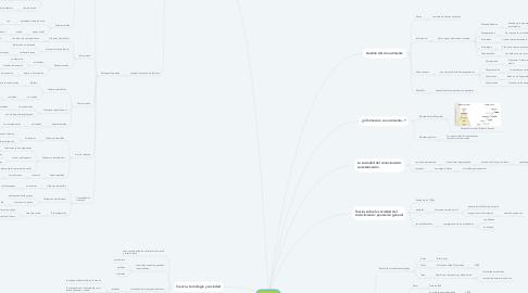 Mind Map: Capítulo 2