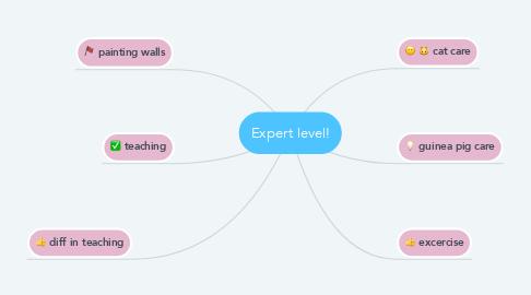 Mind Map: Expert level!