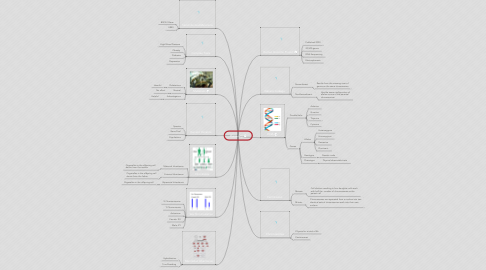 Mind Map: Heredity