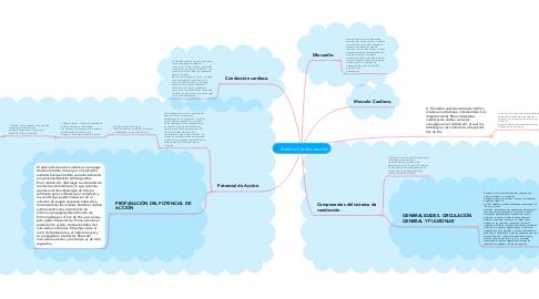 Mind Map: Sistema Cardiovascular.