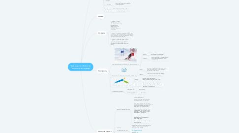 Mind Map: Парк отдыха «Хвалынь»  Горнолыжный курорт