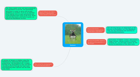 Mind Map: Blackbuck