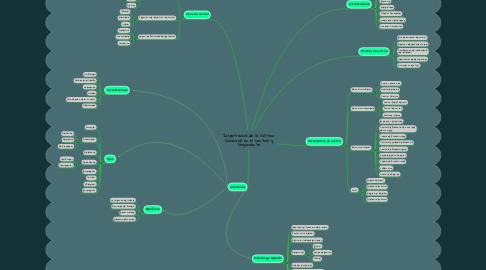 Mind Map: Importancia de la Gestion Gerencial en el Control y Seguimiento