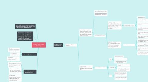 Mind Map: Penghimpunan Dana  (Funding)