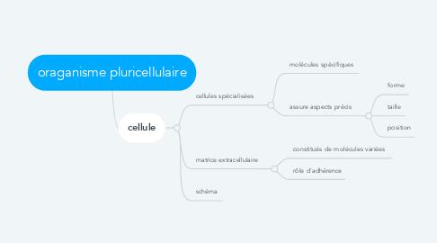 Mind Map: oraganisme pluricellulaire