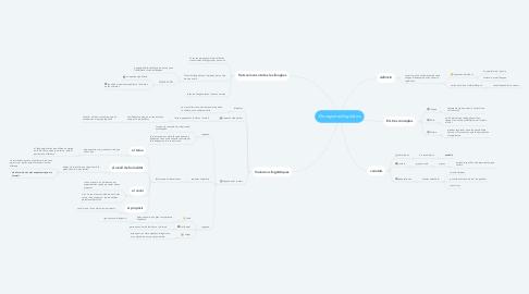 Mind Map: Els registres lingüístics